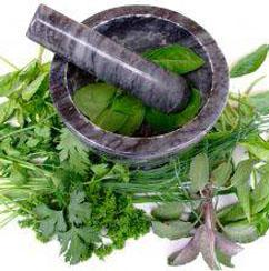 Болезни: лечение желудка травами